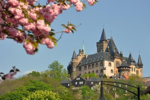 Secret Kasteel Hotel Noord-Duitsland